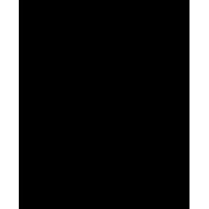 Ikrek horoszkóp