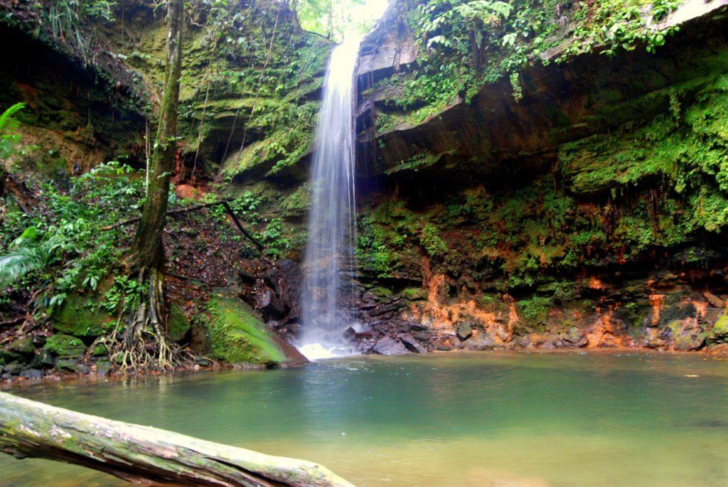Lambir Hills Nemzeti Park