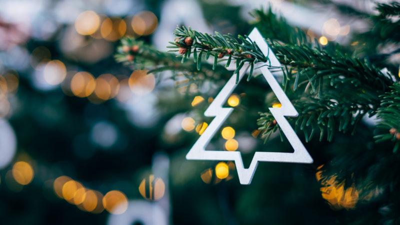 Karácsonyfa vásárlás